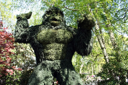 King Kong Topiary